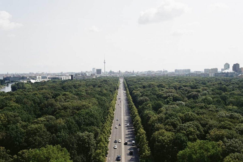 Berlín selva